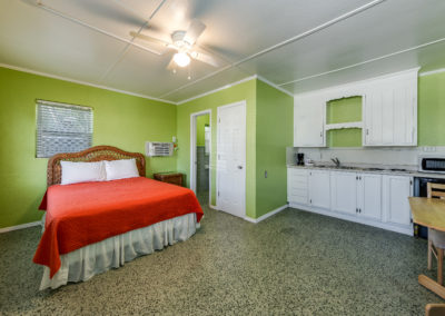 Effeciency with kitchenette, queen bed.